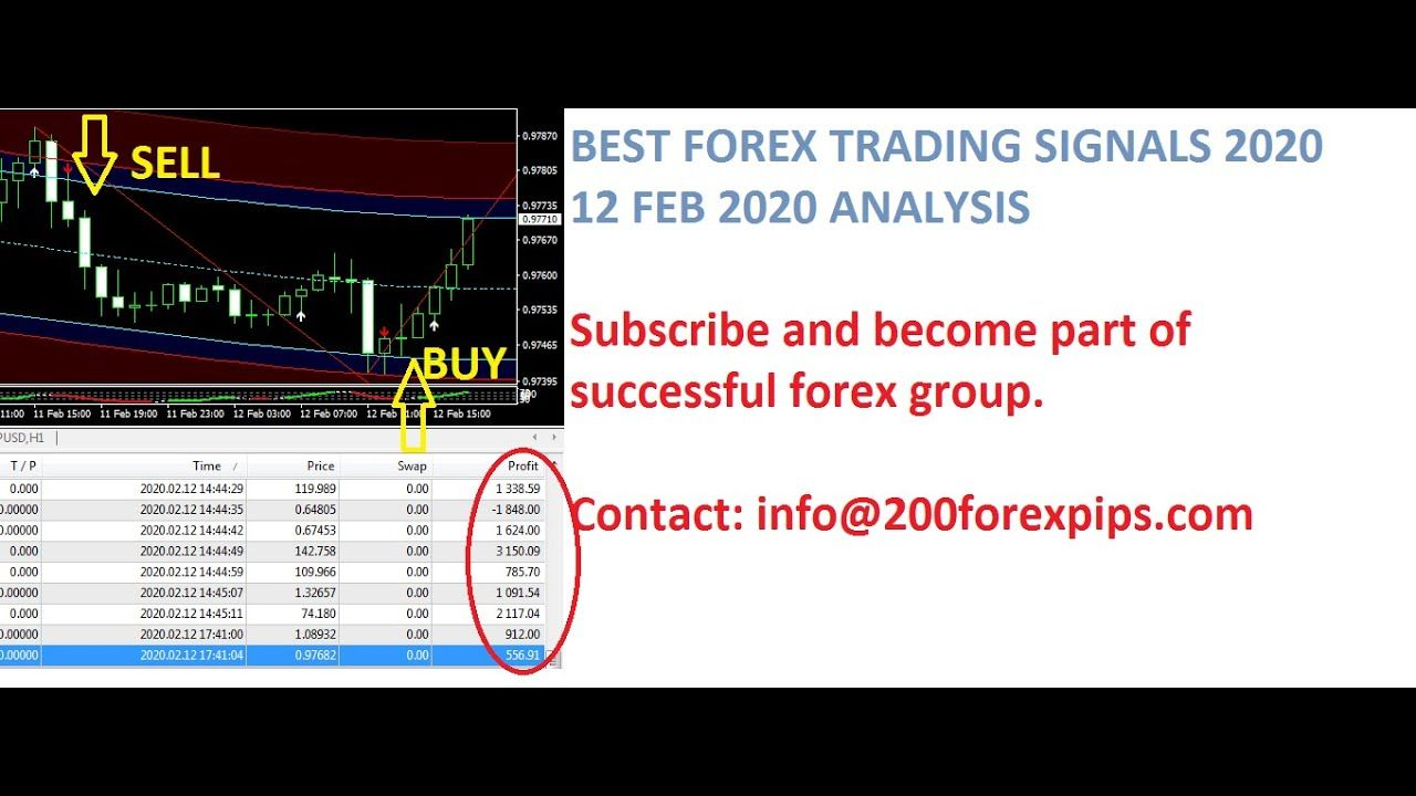 How To Make 200 Pips A Day With Forex Trading 2020 Part 14 In 2020