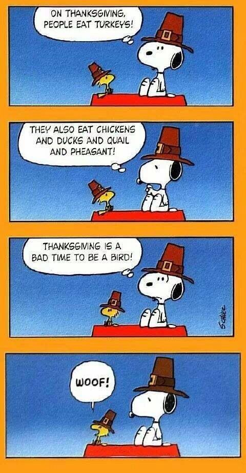 Happy Thanksgiving! | Snoopy funny, Charlie brown thanksgiving, Snoopy and  woodstock