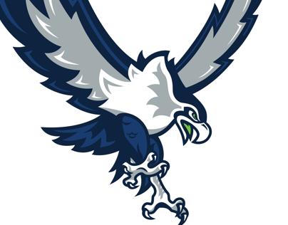 Seattle Seahawks Concept
