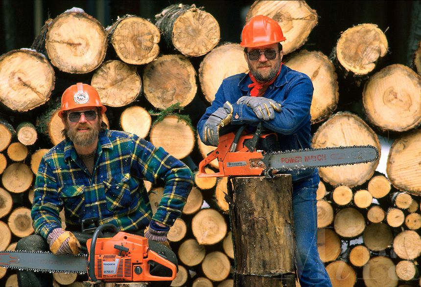 Lumbersexuals try chainsaws