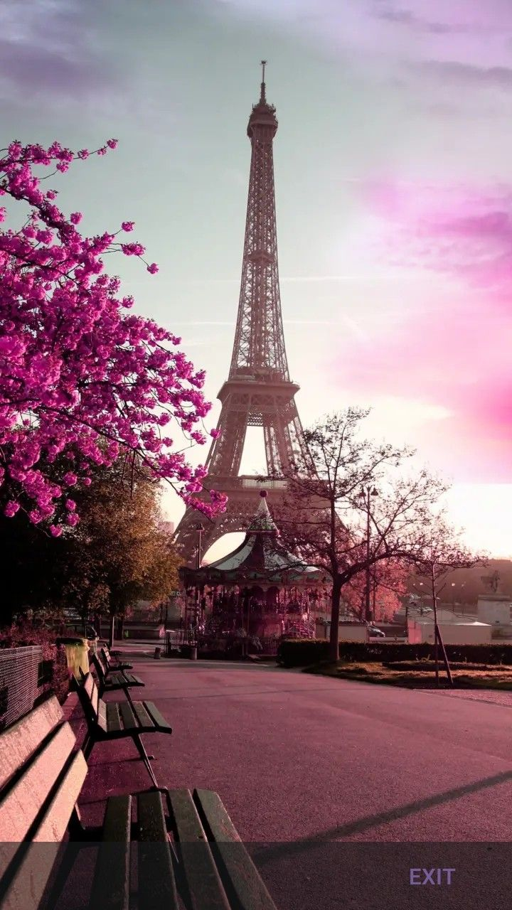 Pin by Madelaine Niemand on Photofabulous Eiffel tower