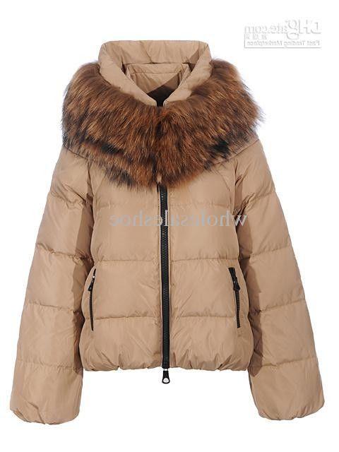 Wholesale Mink Coats for Women | ... Korean Plus Size High-end ...