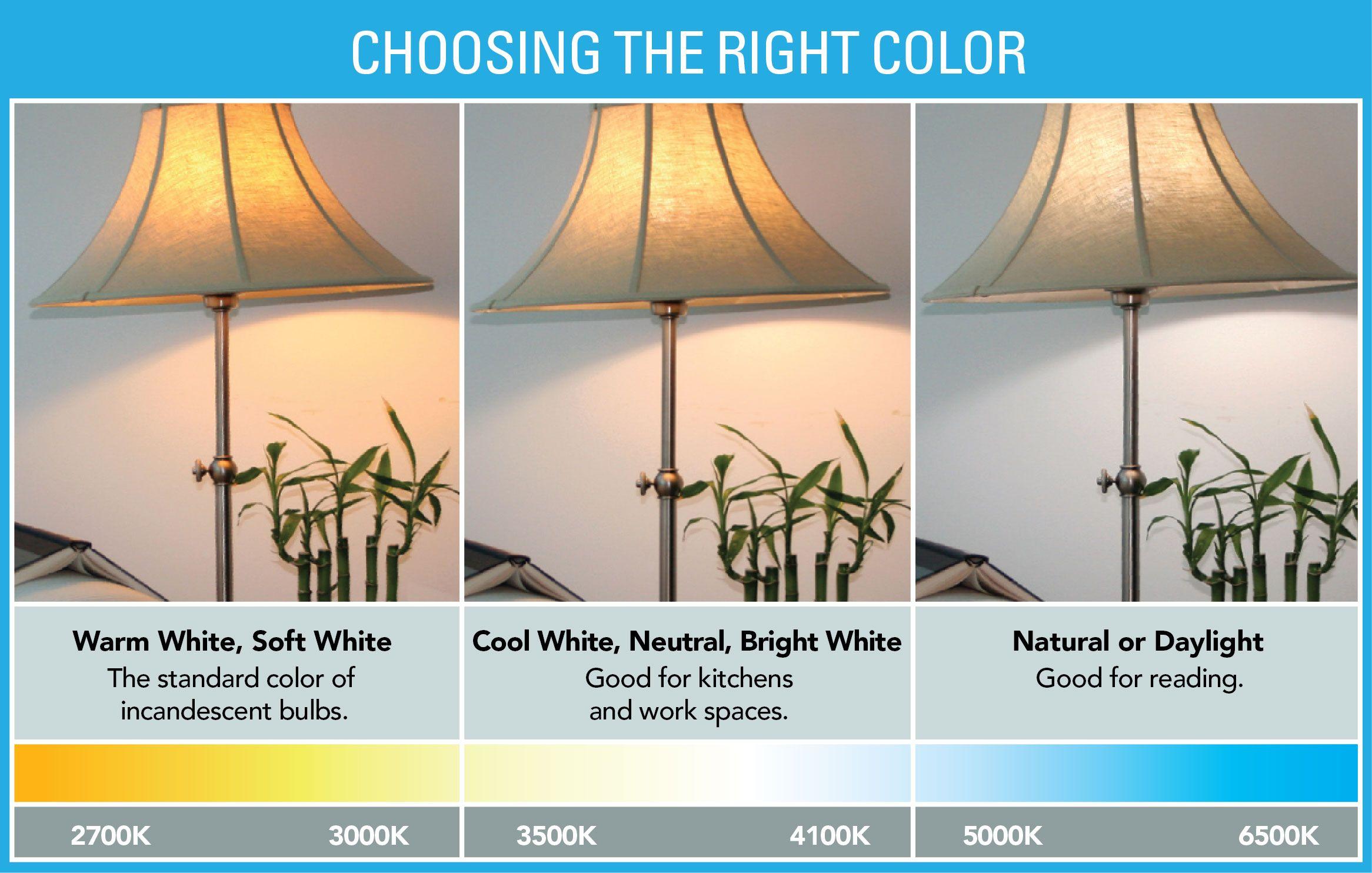 Choose The Right Light White Light Bulbs Choosing Light Bulbs Bulb