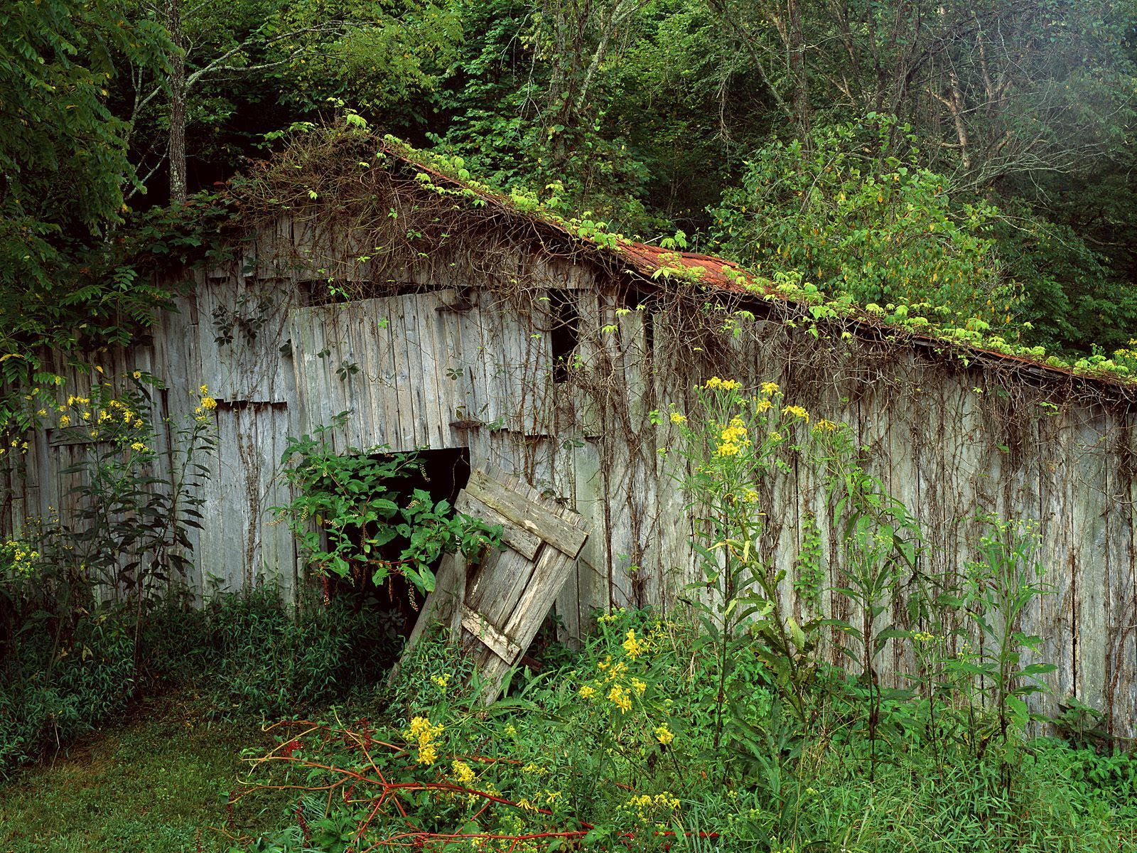 old barns are awesome