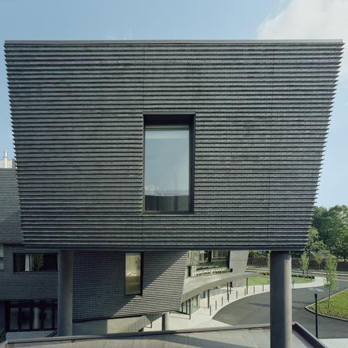 Amazing Architecture Magazine: Endicott Projects Color: Manganese Ironspot Size: Modular