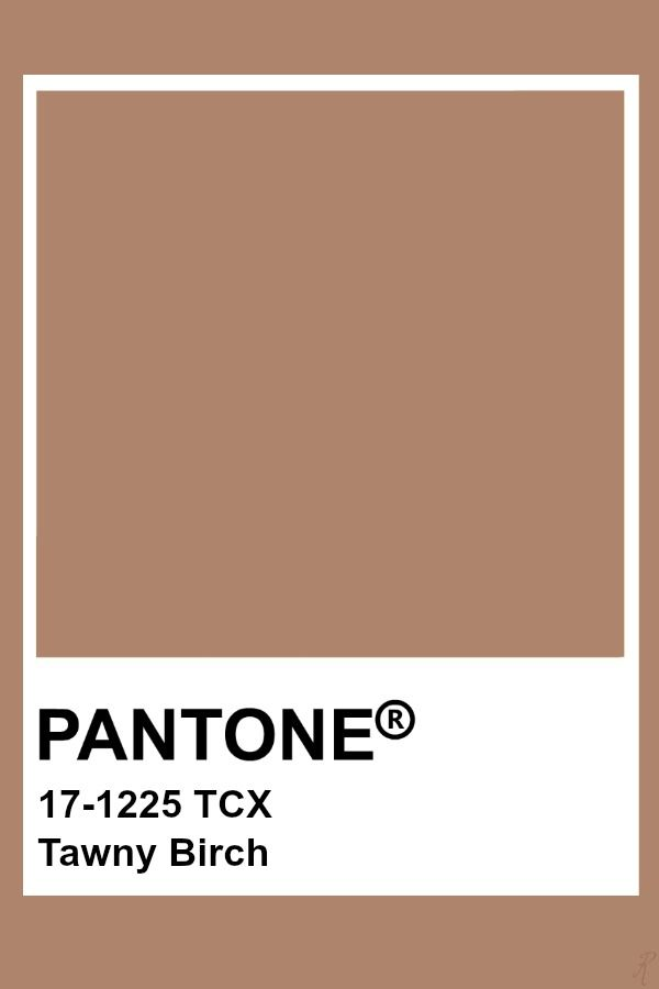Pantone Tawny Birch | Pantone colour palettes, Pantone color, Pantone