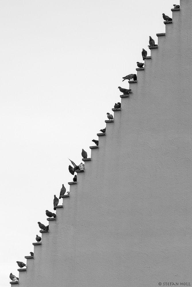 Anita Leocadia u2014 darksilenceinsuburbia Stefan Holl Form - schwarz weiße küche