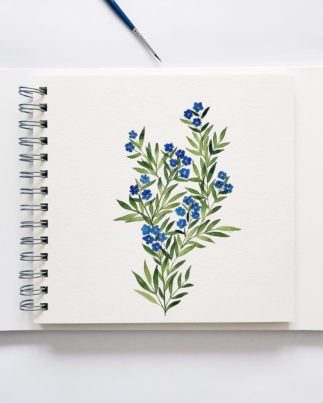 Aucune Description De Photo Disponible Flower Drawing Flower