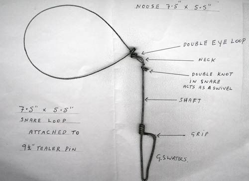 Rabbit Peg Snare Diagrams | Bunnicus Immobilus | Pinterest | Diagram ...