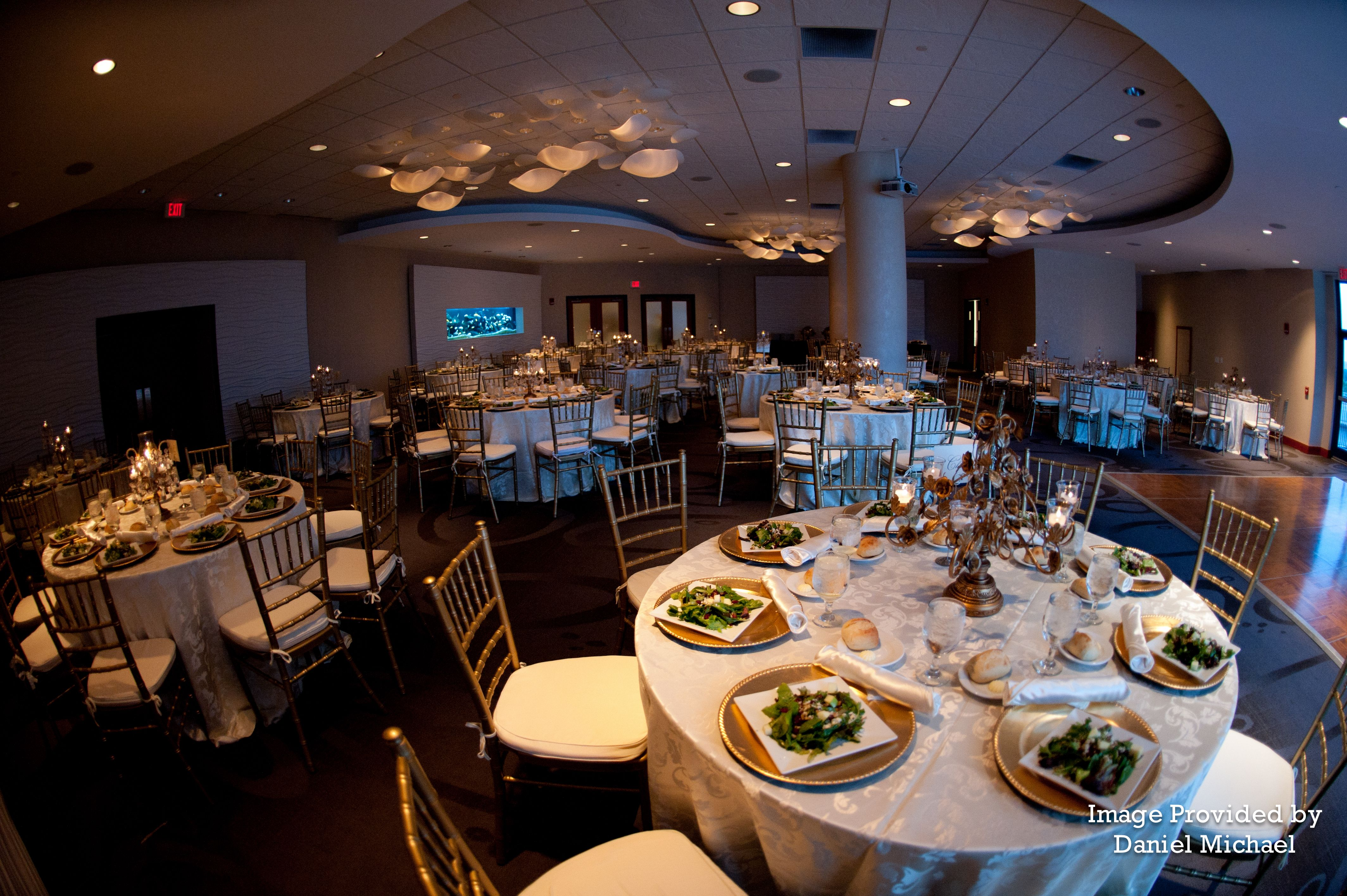 The Riverside Room At Newport Aquarium Is A 6 000 Square Foot Meeting Conference And Special Event Venue With Capacity For 240 Person Sit Down
