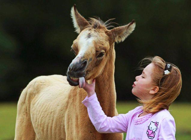 Girl Saves Lethally Ugly Pony