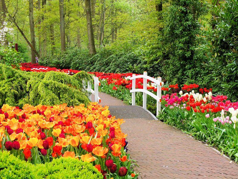 457d57b9d011b32c47566c944a49a2f4 - Best Gardens To Visit In Spring