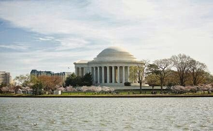 Great D.C. w/its Cherry Blossoms trees!!!