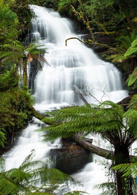 Chutes Victoria: Beauchamp Falls, Victoria, Australia,