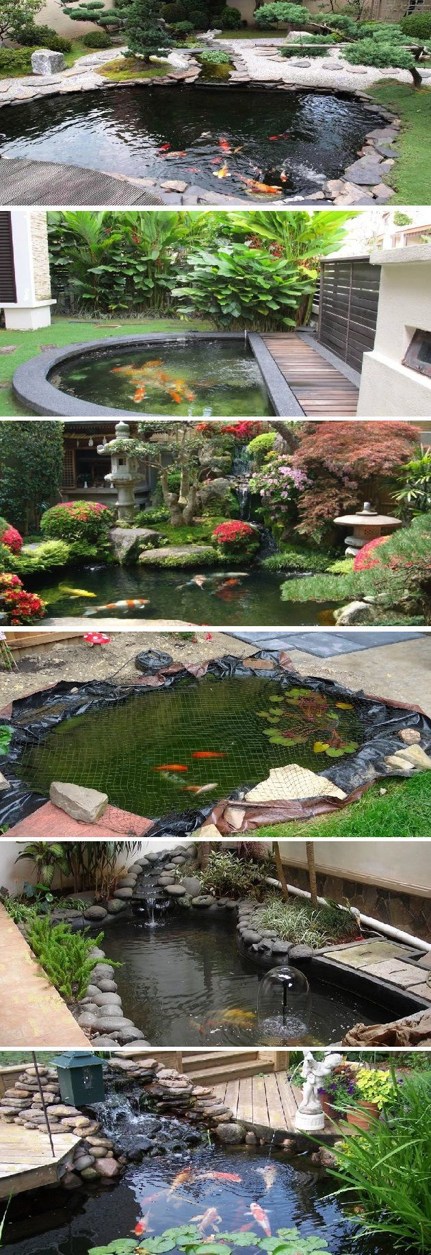 Small Koi Pond Design Ideas Pond Rocks Garden Pond Design