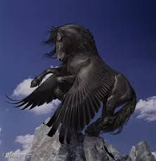 Image result for black horse with wings tattoo