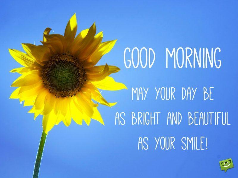 Hello Good Morning Best Good Morning Textes Good Morning Meme Good Morning Quotes Good Morning Smile Quotes