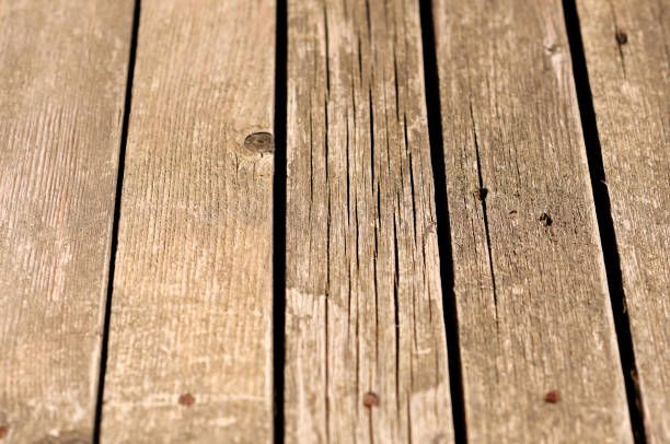 background timber