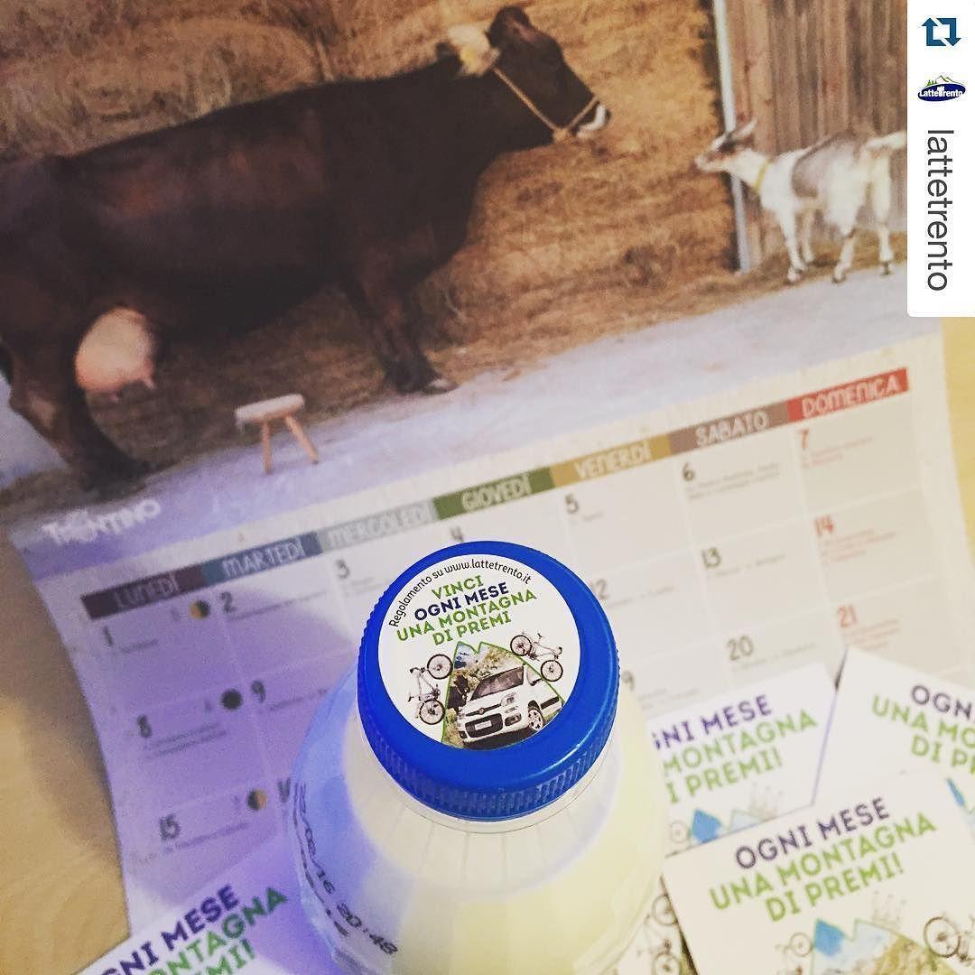 #Repost @lattetrento  #concorso a premi #lattetrento: ogni mese una montagna di premi!  Con solo 3 prove d'acquisto vi regaliamo il benessere del #trentino!  #lattetrento #tivuolebene #trentinowow #gustotrentino #competition #wintrentino