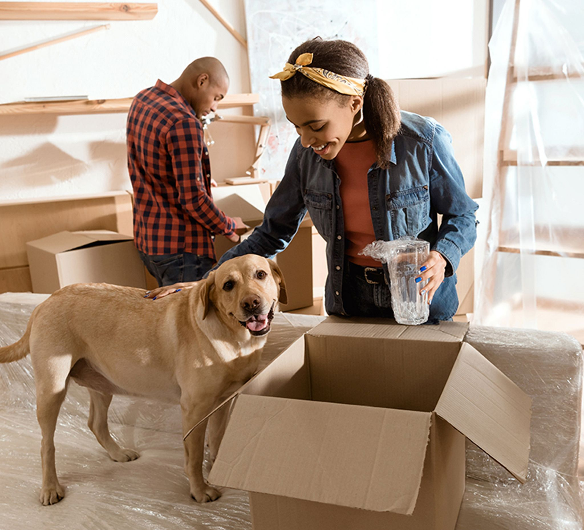 chicago movers inandoutmoving Moving company, Pets