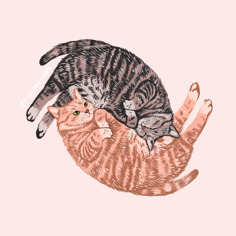 Cat Love Print,  Cat Wall Art, Cat Art Print, Cat Lady Gift, Kids Boy Girl Room, Nursery Cat Art, Cu