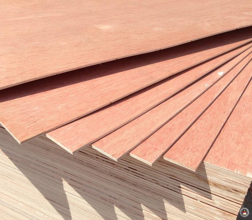 Commercial Plywood 1 Size 1220x2440mm Thickness2 5 30mm E2 E1 E0 Mr Wbp Glue Okoume Bintangor Birch Face 2 Glue E2 E1 E0 Wbp Gl Bintangor Plywood Wood