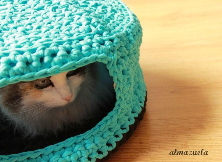 cueva gato trapillo | cositas | Pinterest | Cueva, Trapillo y Gato