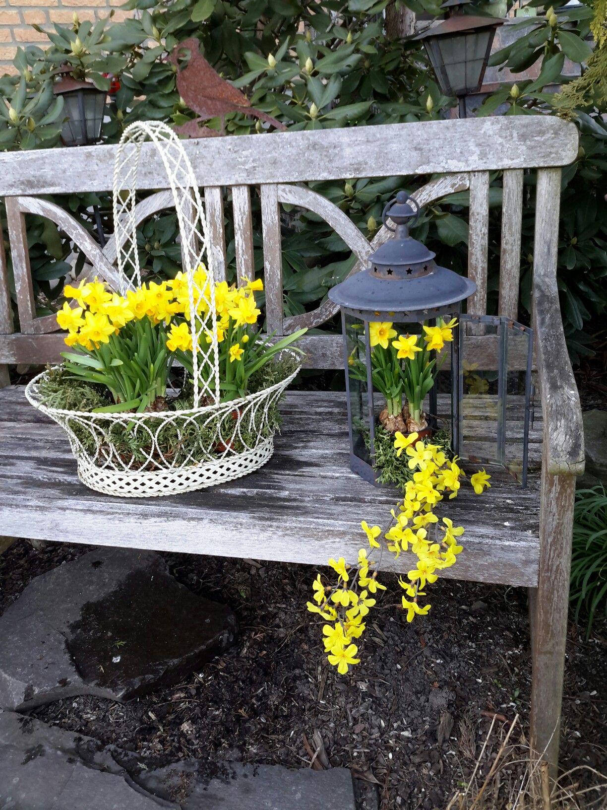 Fruhlingsdeko Auf Alter Gartenbank Garten Garten Deko