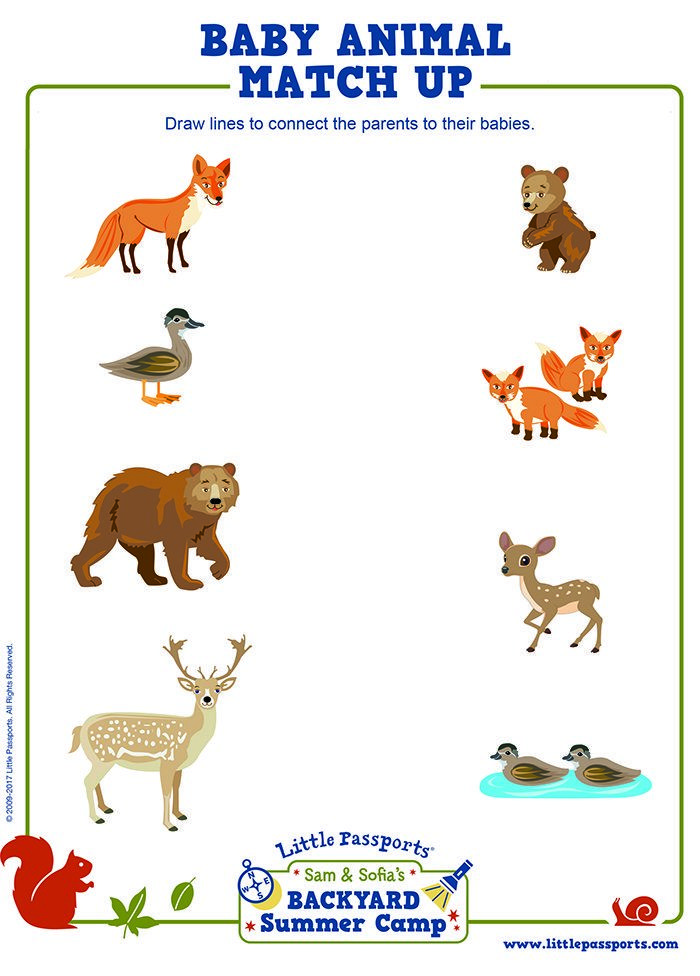 Summer Camp Printable Baby Animal Matchup Forest animal