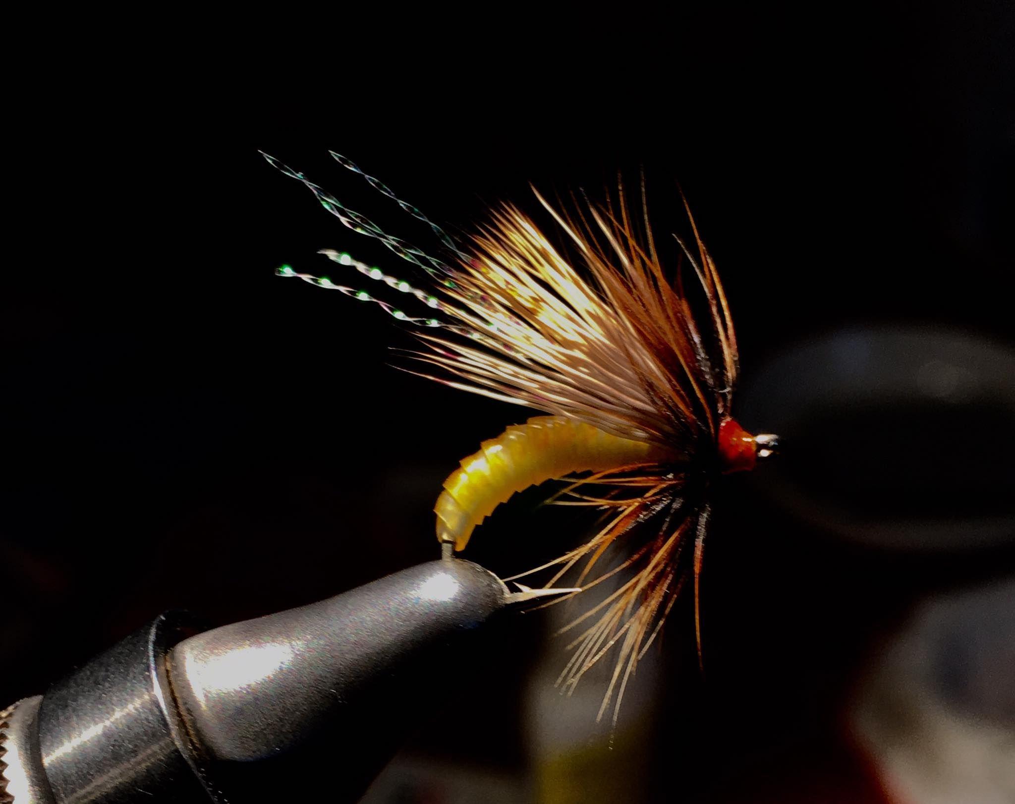 Wet Fly Trout 1 Dozen Caddis Brown /& Cream