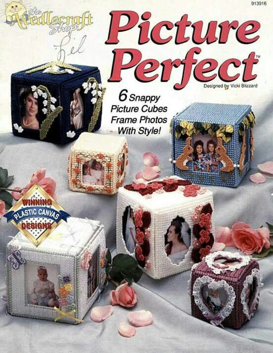 Picture Perfect Plastic Canvas Pattern Book 913916 The Needlecraft