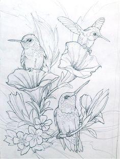 Humming Bird Flower Coloring Pages Colouring Adult Detailed Advanced Printable Kleuren Voor Volwassenen Coloriage Pour Adulte Anti Stress Kleurplaat