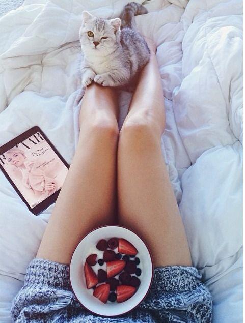As melhores coisas da vida podem e devem ser feitas na cama