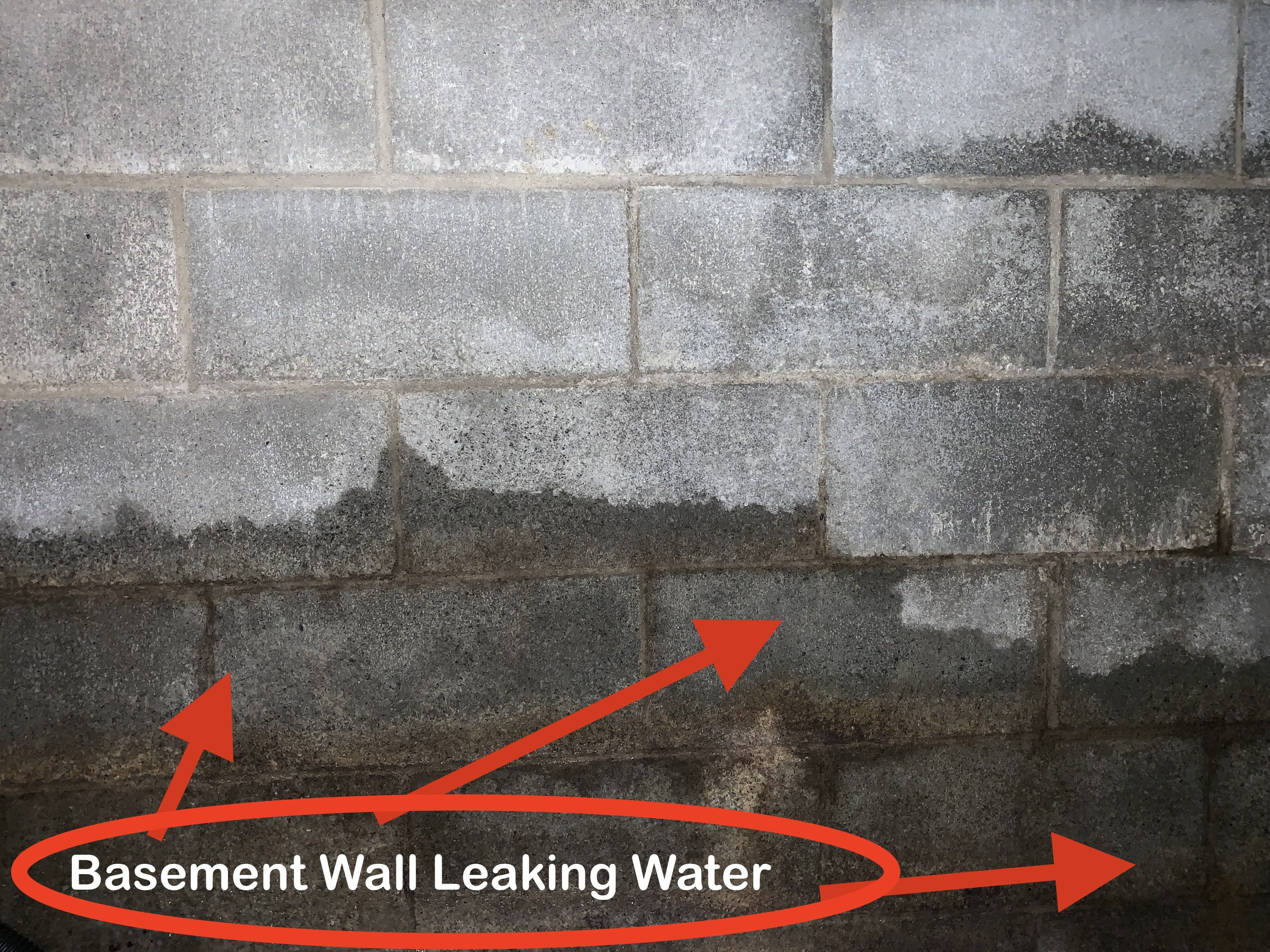 Wet Basement Wall Leaking Water From Exterior Drainage Problem Basement Waterproofing Inspection In 2020 Wet Basement Waterproofing Basement Basement Walls