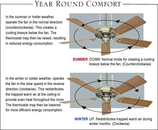 Which Way Should My Hunter Ceiling Fan Spin All Home Decor Review