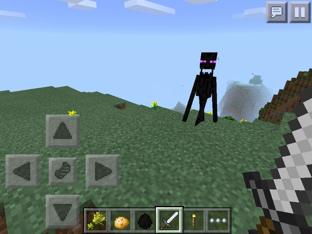Why ender why