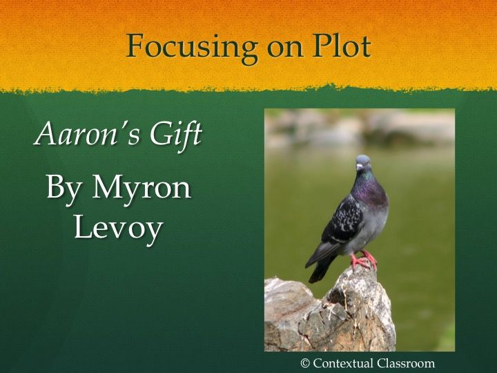 Aaron's Gift by Myron Levy Short Story Lesson | Literary elements ...