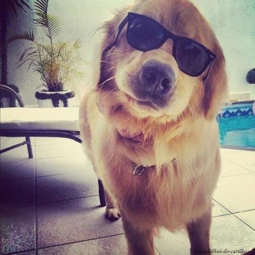 buddyyyy :)