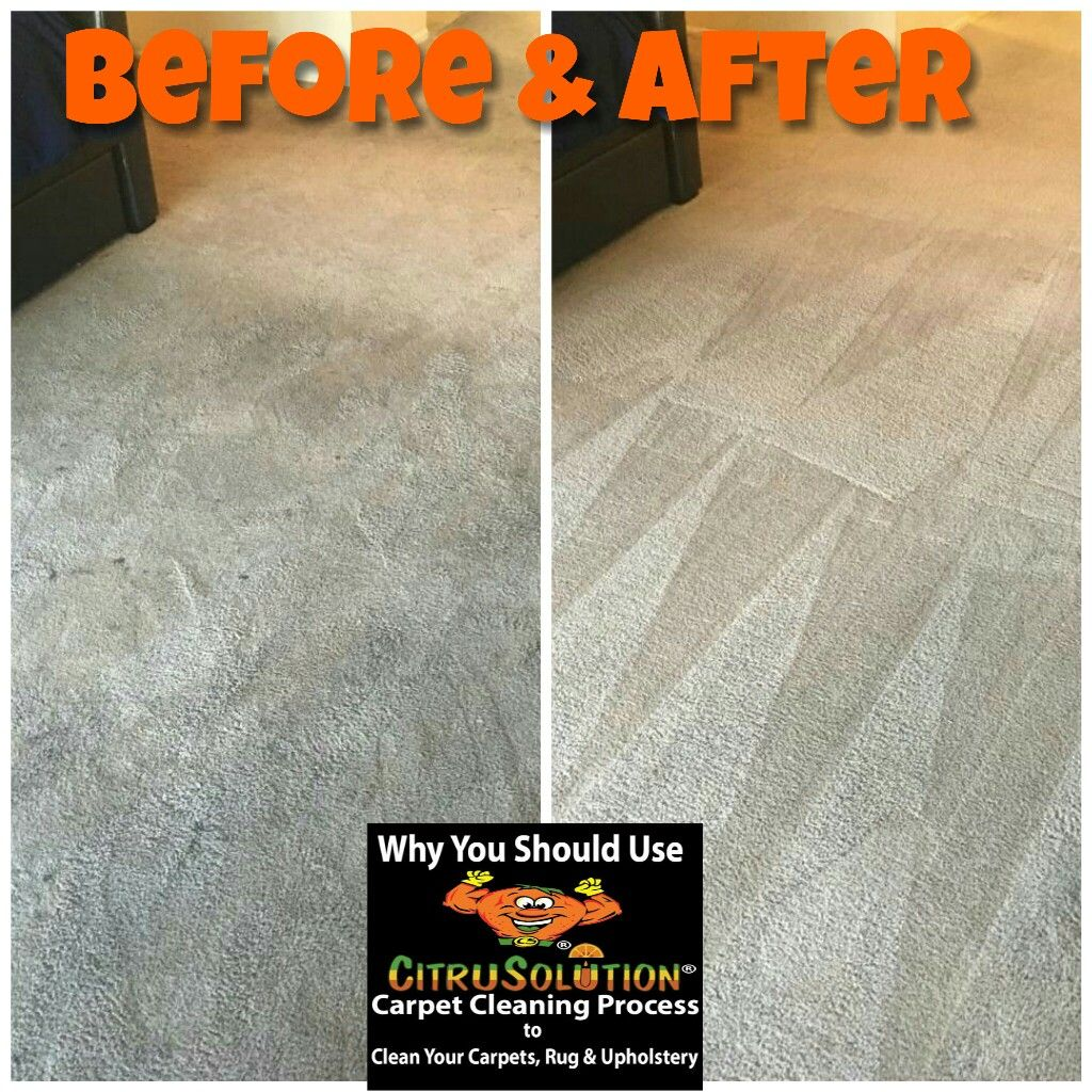 Citrusolution carpet cleaning of north tampa fl offers you a healthier cleaner and