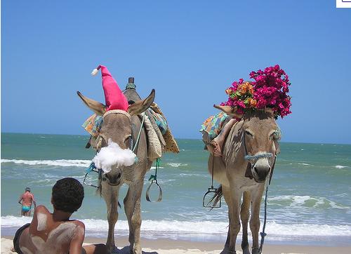 Brazil Christmas Traditions.Brazil Christmas Traditions Christmas Around The World