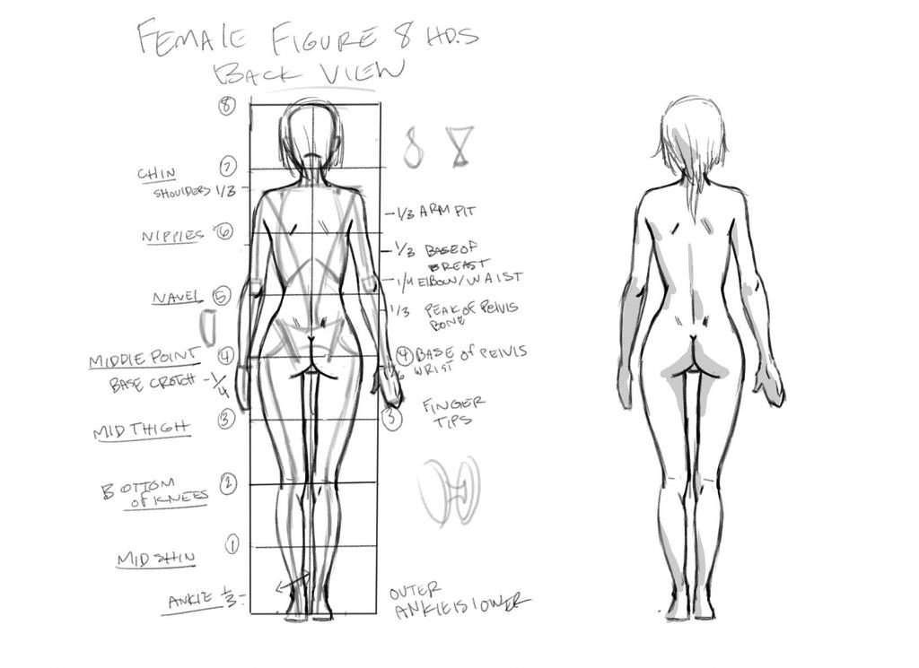 Female Figure Back View Tutorial By Thejettyjetshow Human Figure Drawing Figure Drawing Figure Drawing Female