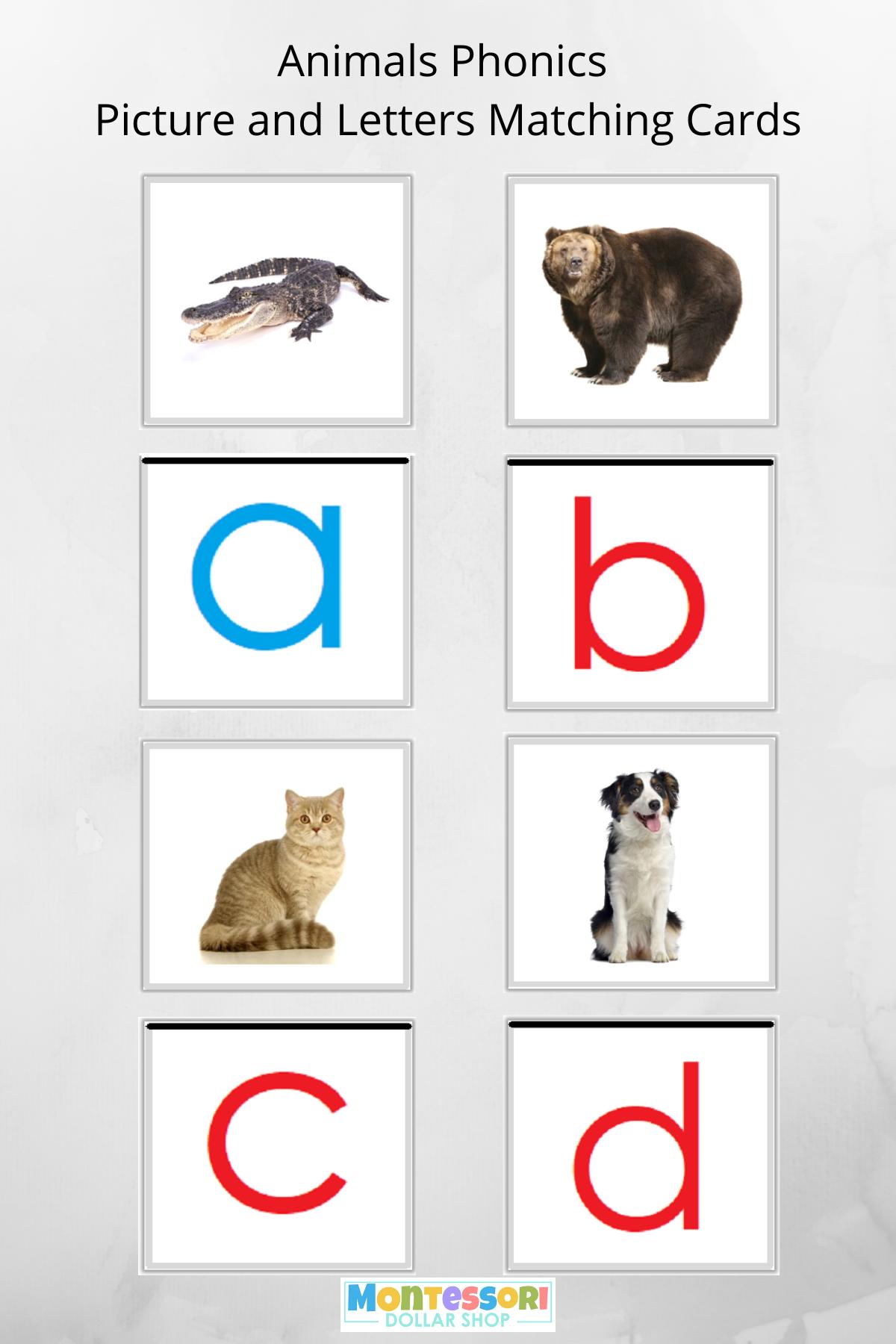 Montessori Phonics Initial Sound Cards Animals In