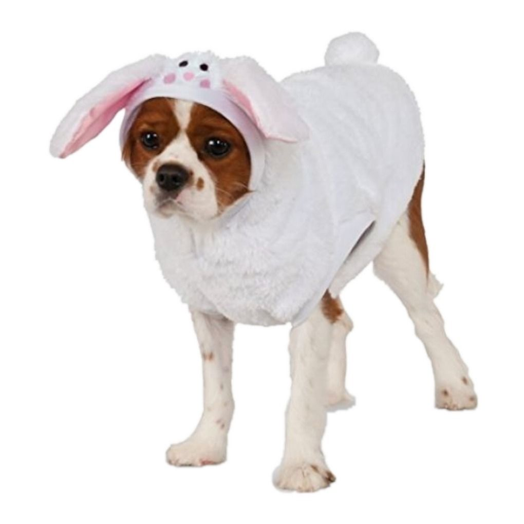 Rubie S Pet Costumes Ebay Home Garden Products Pet