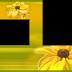 SYEDIMRAN: albums frames _engagement frames_love frames_marriags frames_weddings frames_ birthday frames_flower frames
