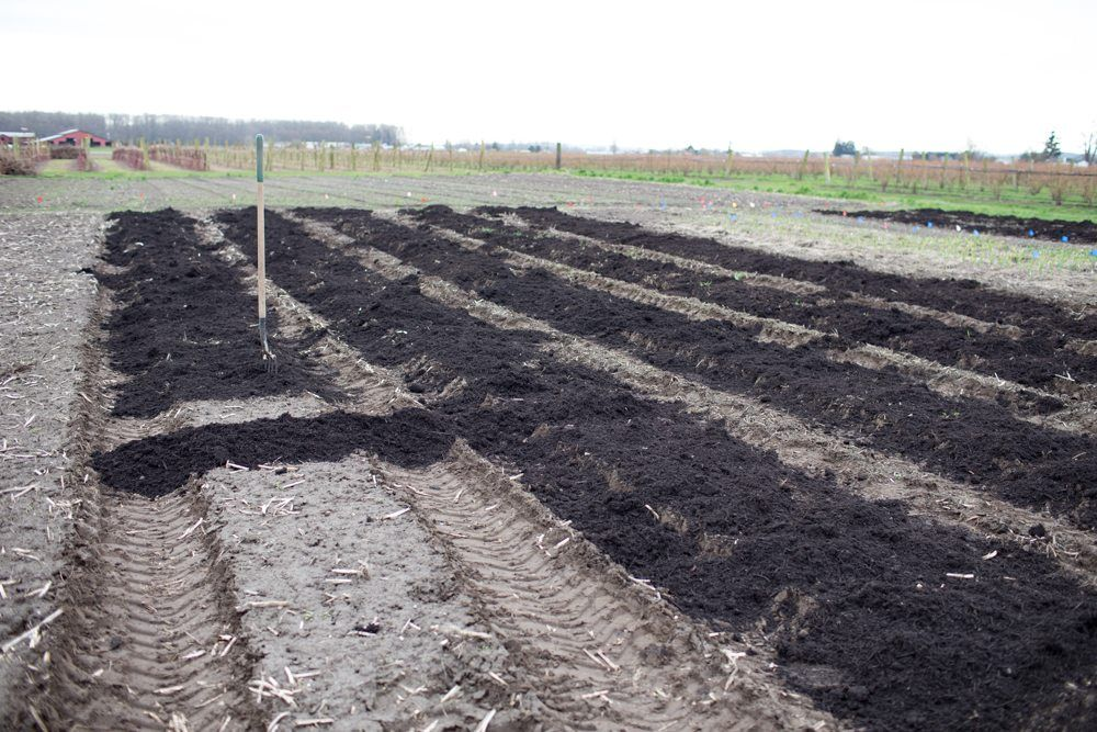 Soil Preparation Garden soil, Garden beds, Flower farm
