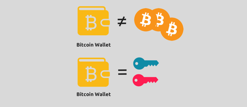 A Bitcoin or any other cryptocurrency wallet does not store any