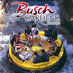 Busch Gardens is just a 2 hour flight from The Crossings at