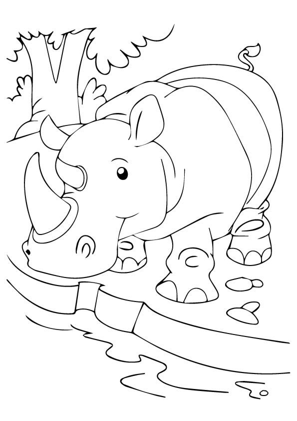 10 Cute Rhino Coloring Pages For Your Toddler Animal Coloring