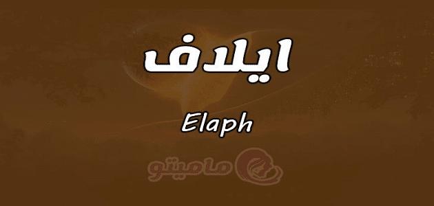ما معنى اسم إيلاف Elaph في 3