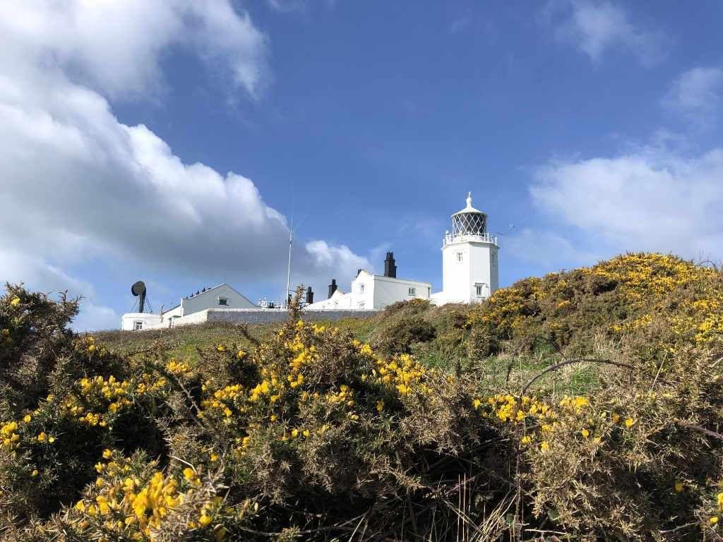 Es Gibt So Viele Ferienhauser In Cornwall Und Sicherlich Fragt Ihr